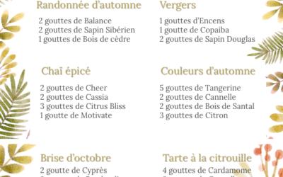 Mélanges huiles essentielles pour diffuseur – Octobre